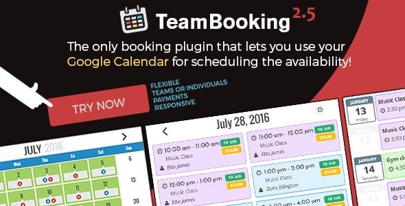 Team Booking - WordPress booking system plugin free download wpzones